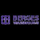 Инсталляции для унитазов Berges