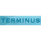Электрические полотенцесушители Terminus
