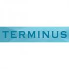 Водяные полотенцесушители Terminus