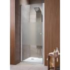 Душевая дверь распашная 100 см Radaway EOS DWJ 100 37923-01-01N
